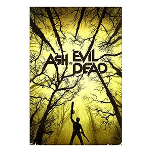 Ash vs. Evil Dead. Размер: 40 х 60 см
